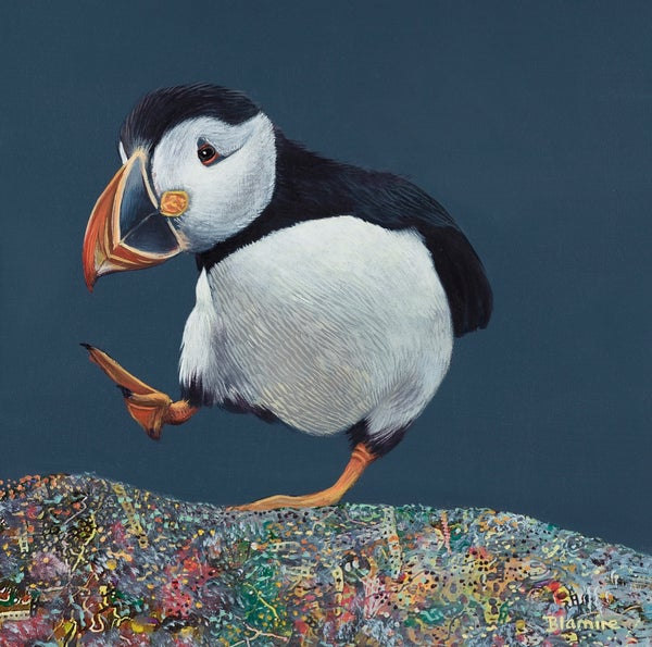 Image of Ceit Mackay puffin print