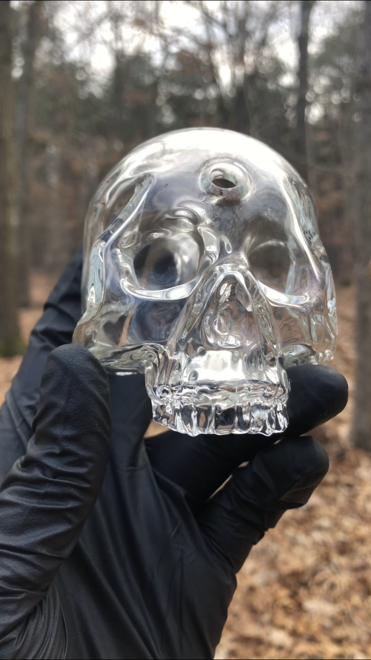 Image of Clear Skull
