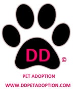 Image of FUND RAISER TO QUARENTINE PETS, AND PROVIDE FOR ABANDONED AND ORPHANED PETS DUE TO COVID-19