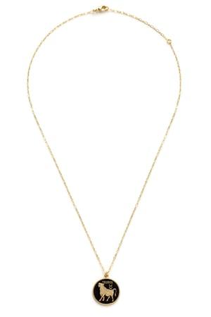 Image of Amano Taurus Enamel Medallion Necklace