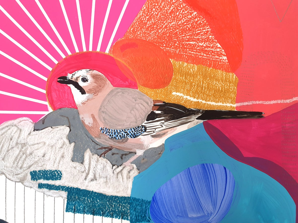 Jay (pink sunset) Original