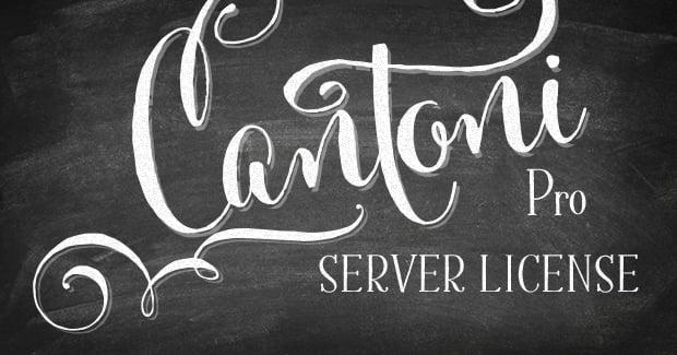 Image of Custom Server License