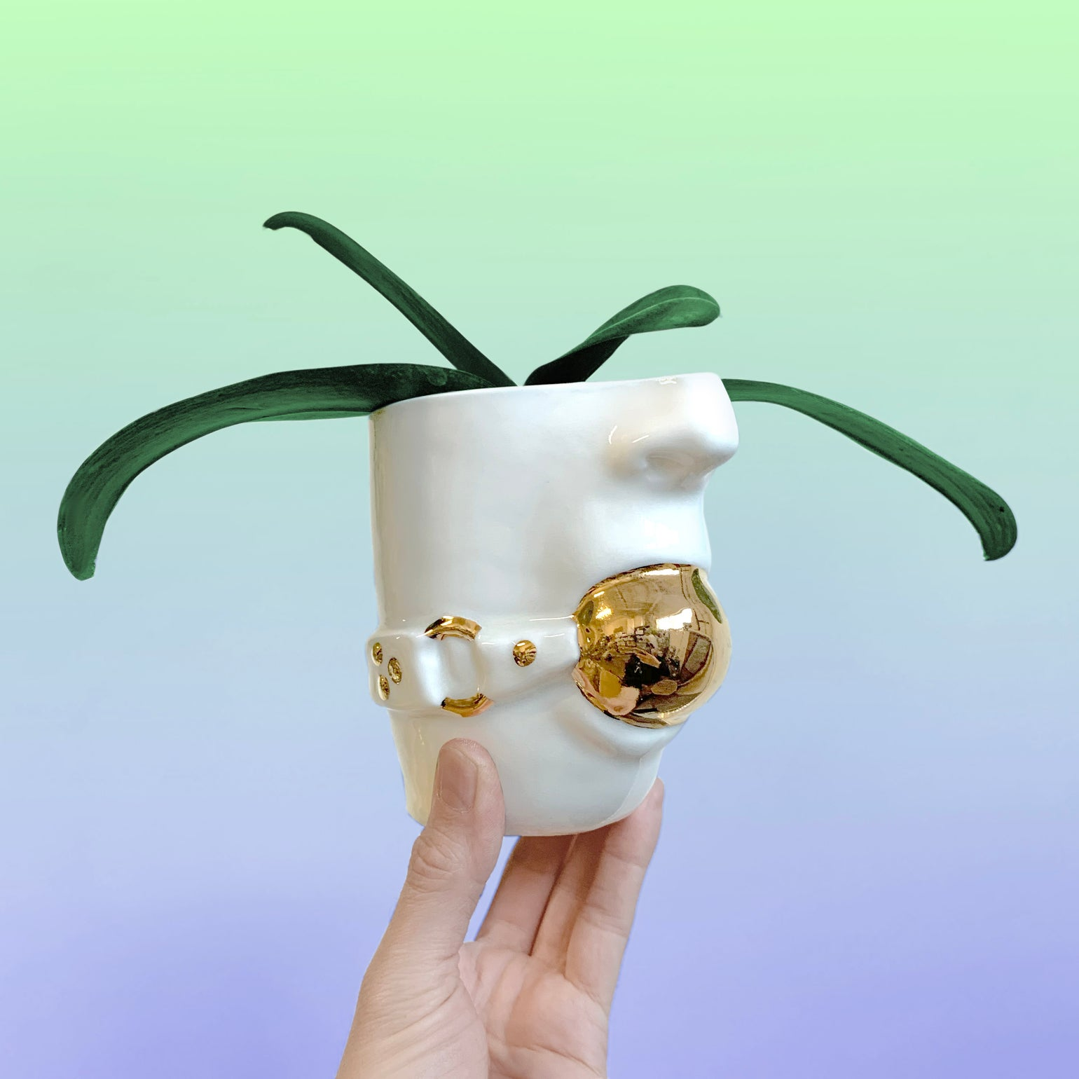 Image of Gag Planter with 22kt gold