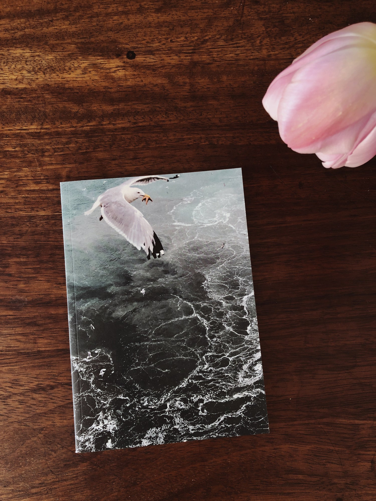 "Image of Notebook ""Seagull"""