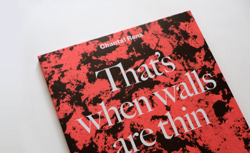 Image of 'THAT'S WHEN WALLS ARE THIN' - edition