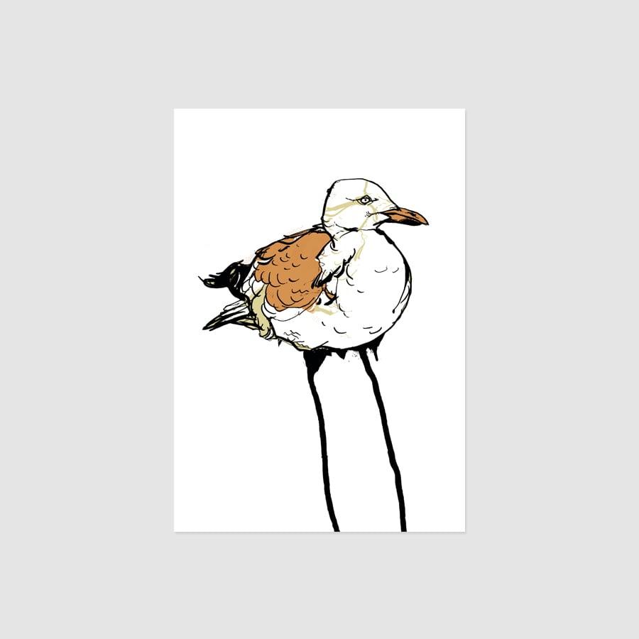 Image of MOEWE WHITE Card