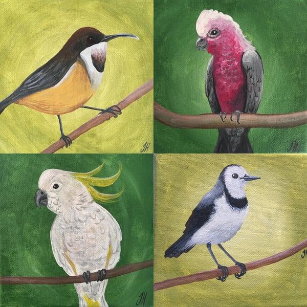 Image of Australian Bird Original Paintings