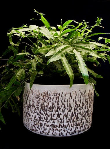 Slip etched planter