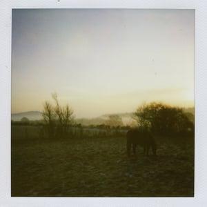 Image of Ursine Vulpine: 'Fenrir' EP