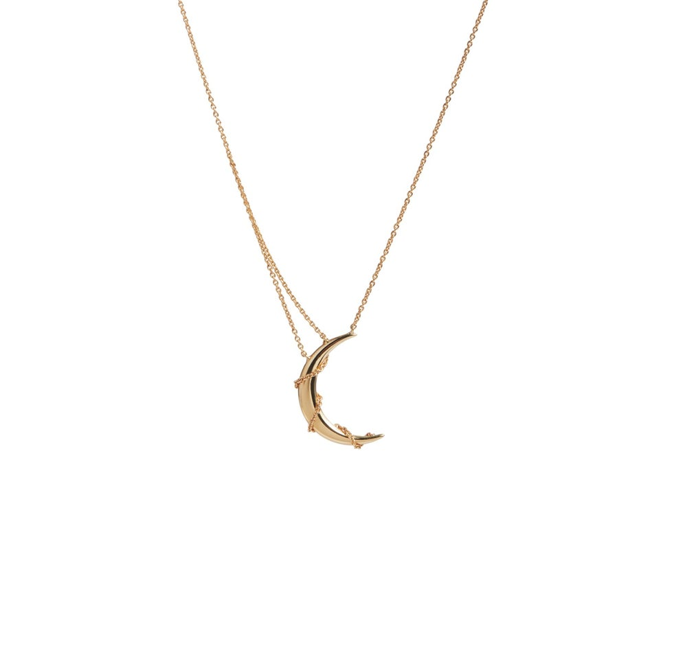 Image of Moon in Chains Necklace