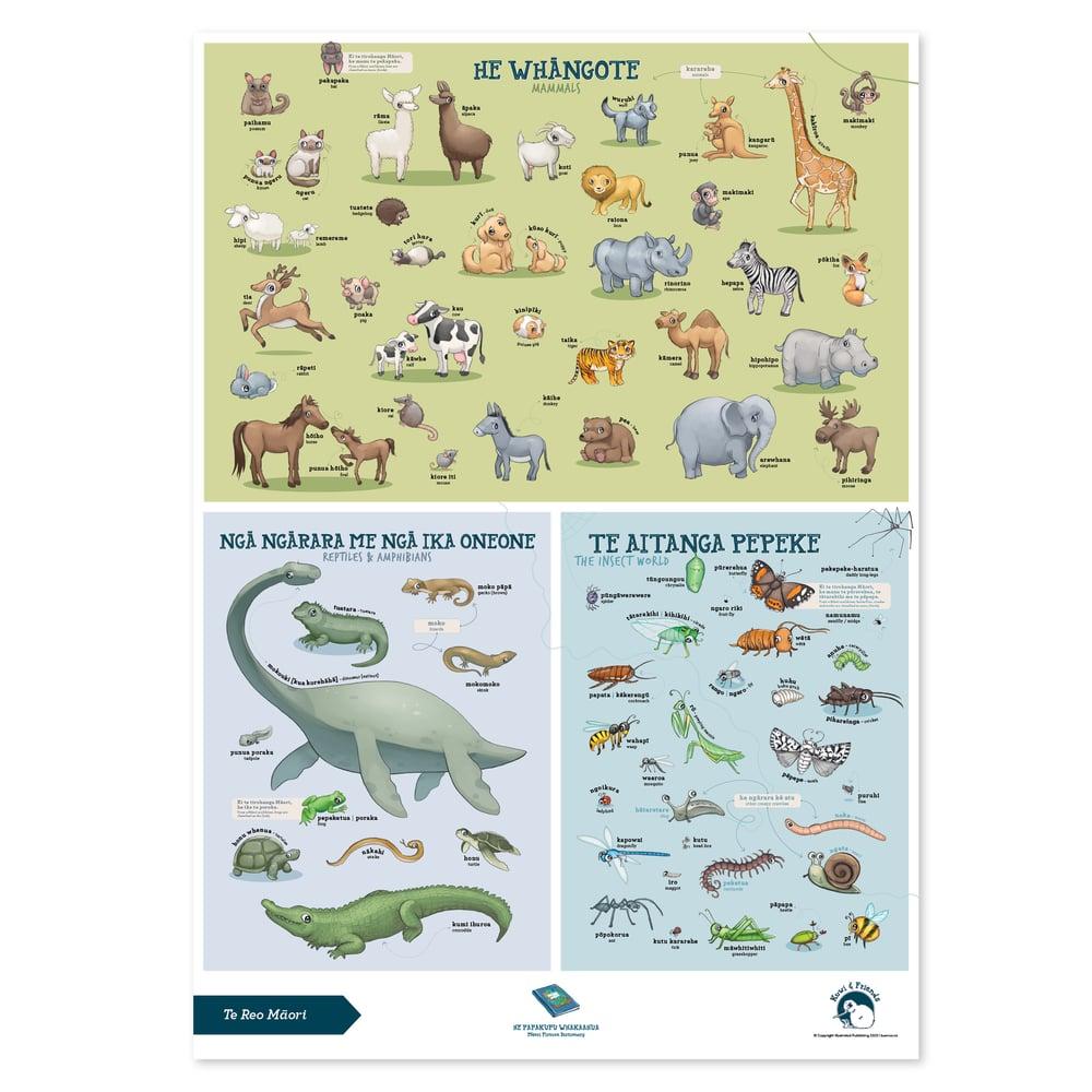 Te Reo Māori - A2 Poster - Animals
