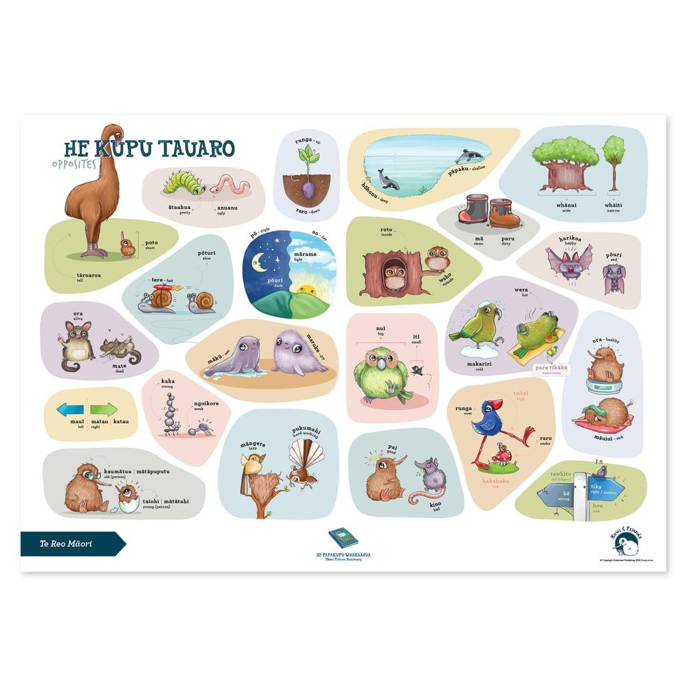 Te Reo Māori - A2 Poster - Opposites