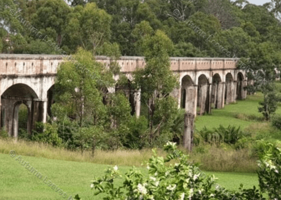 Image of T30 Boothtown Aqueduct Greystanes Sydney