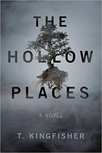 Image of The Hollow Places for Jennifer Bailey