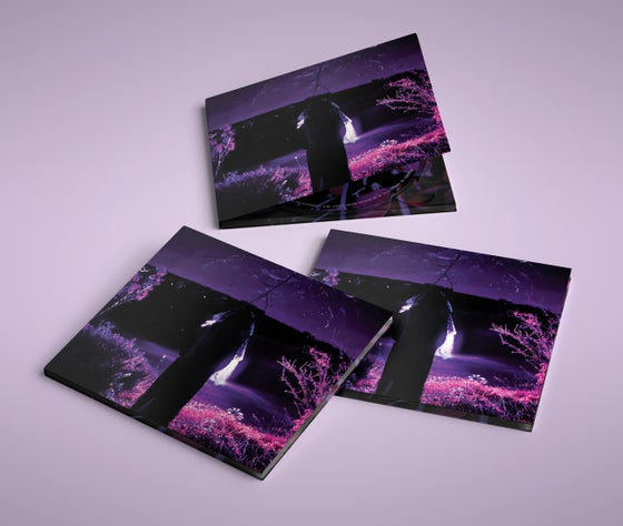 Image of Sidewalks And Skeletons - Entity Digipak CD