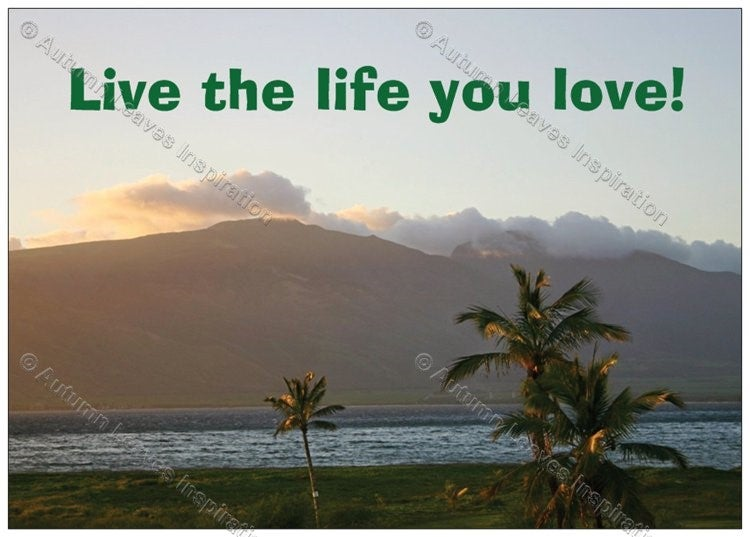 Image of Q9 Live the life you love