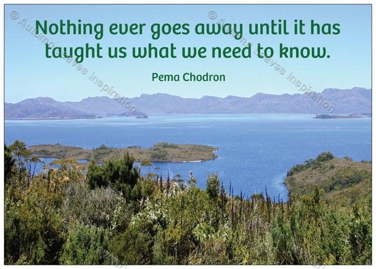 Image of Q10 Pema Chodron quote