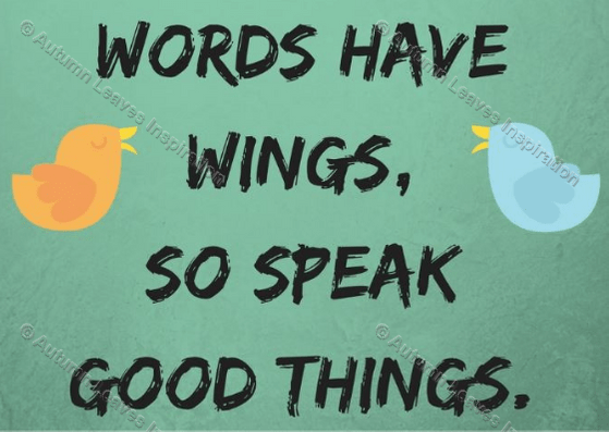Image of Q21 Words have wings