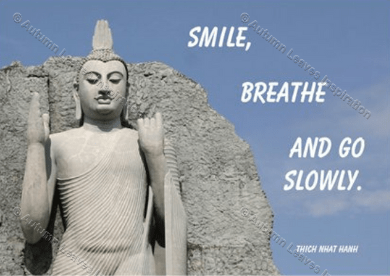 Image of Q24 Thich Nhat Hanh quote