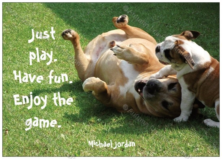 Image of SD2 Tyson & Jelly Bean - Michael Jordan quote
