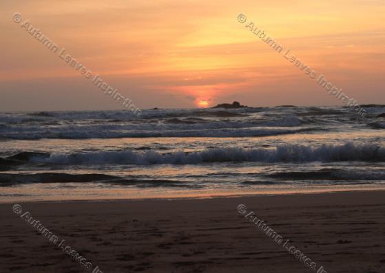 Image of N3 Sunset Bentota