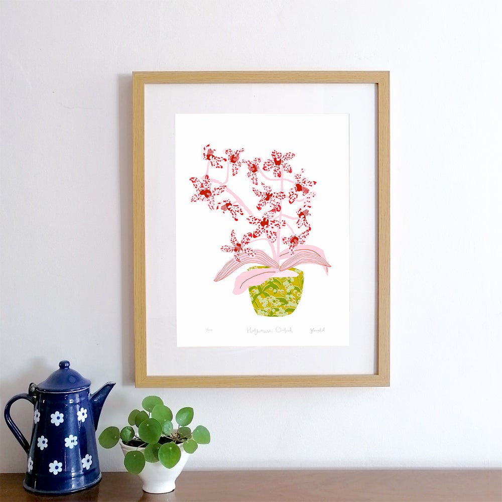 Hothouse Orchid Giclee Print