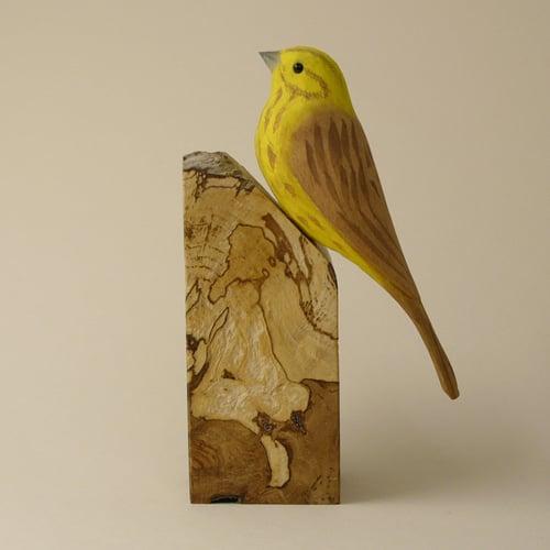 Image of Yellowhammer