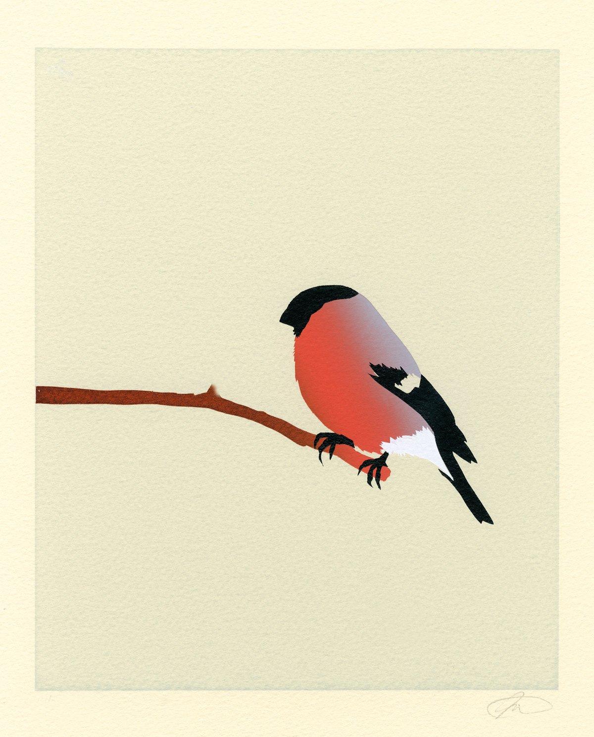 Image of Bullfinch Screen Print