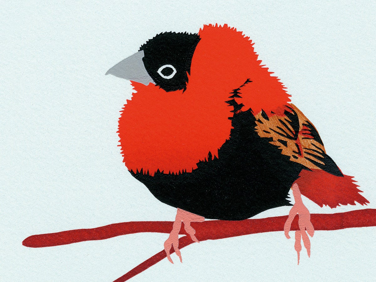 Image of Orange Bishop Screen Print