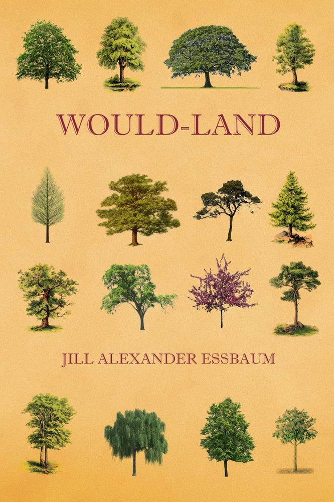 Image of Would-Land by Jill Alexander Essbaum