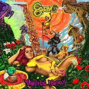 Image of FATAL ERROR: VAGIN*A NASVAY CD