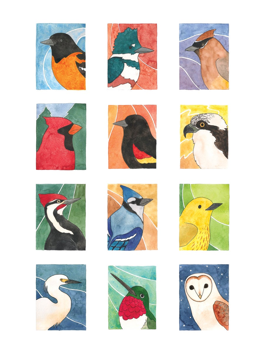 Image of Birds of All Seasons Collage: Set 2