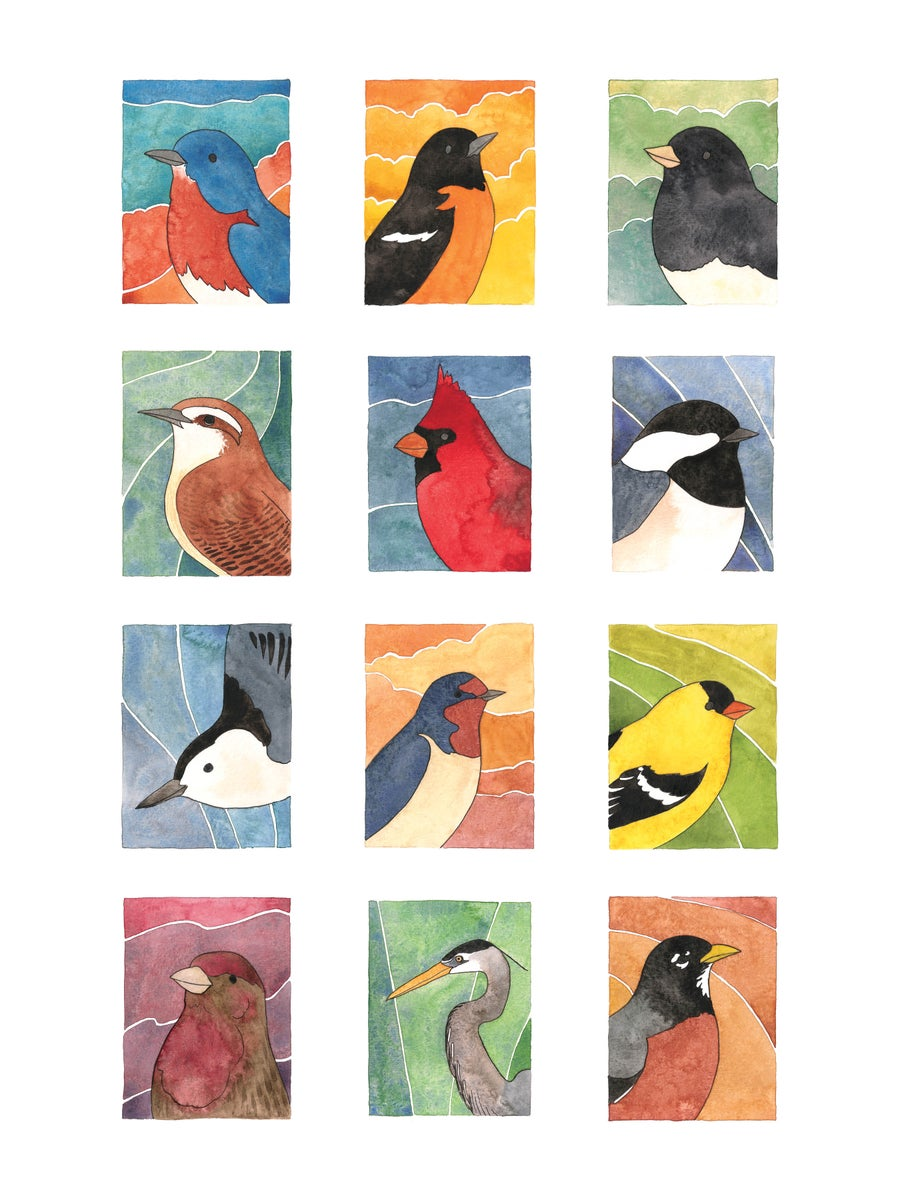 Image of Birds of All Seasons Collage: Set 1