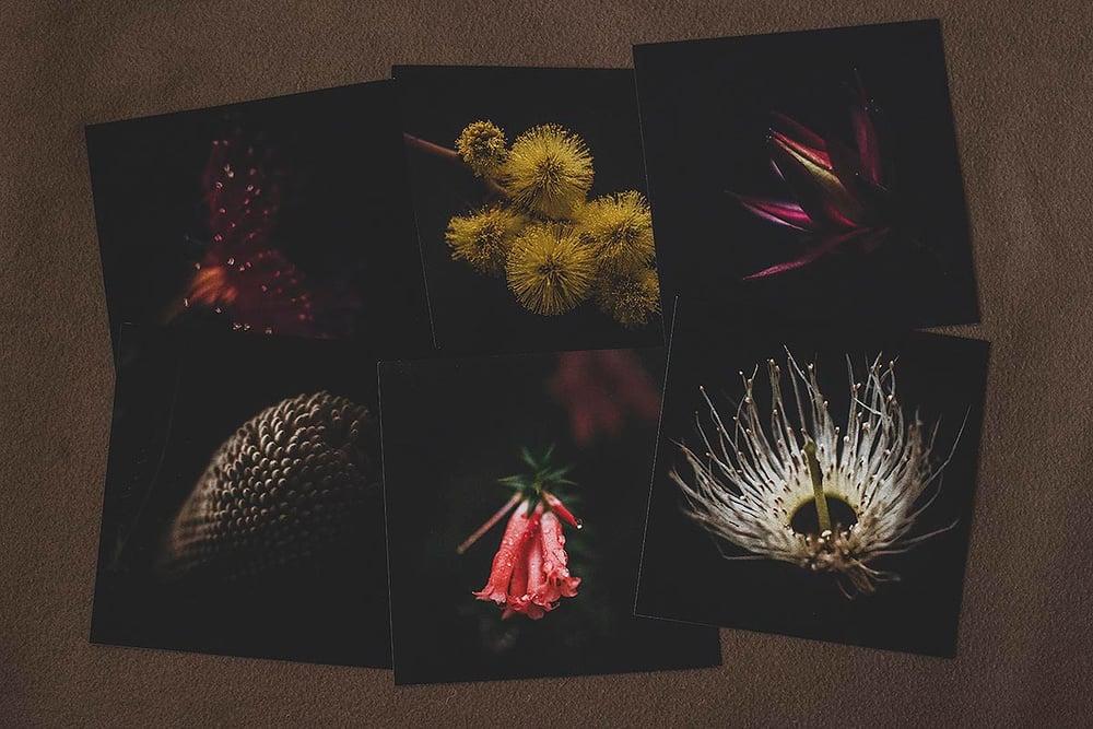 Image of Australiana 2 - Postcard Collection