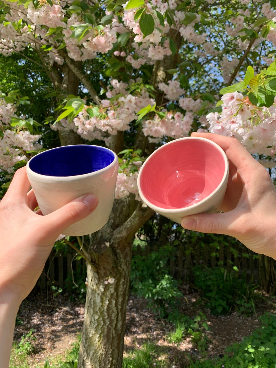 Image of BLUE / PINK TUMBLERS