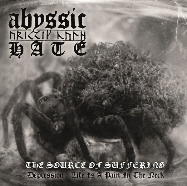 ABYSSIC HATE -The Source Of Suffering- CD