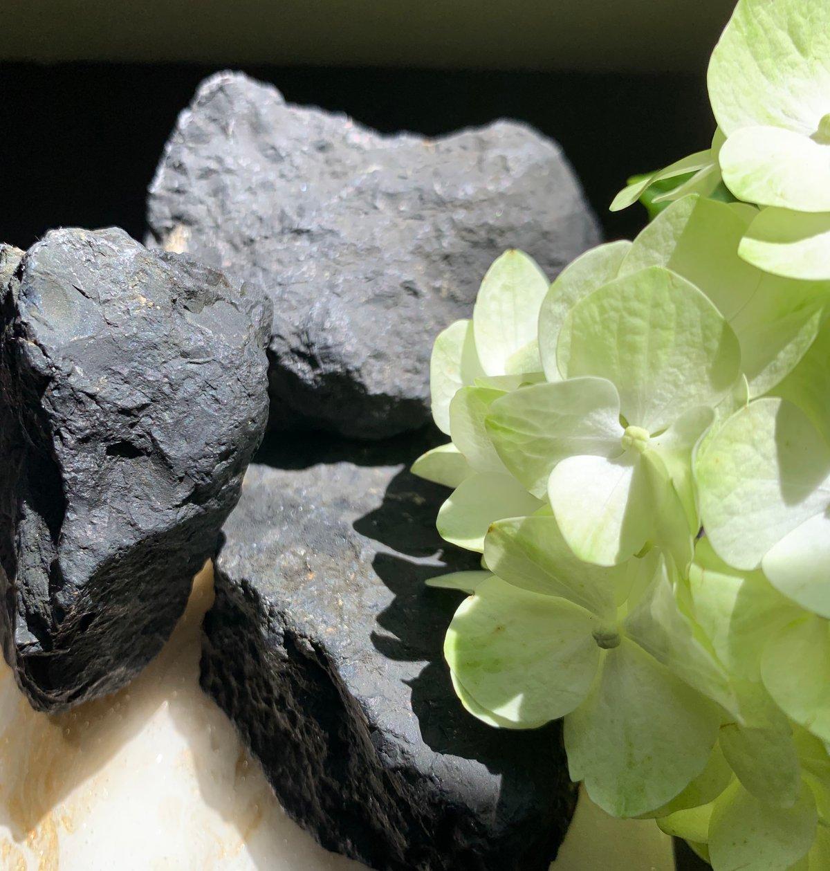 Raw Shungite Stone