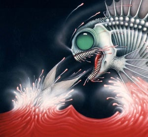 Image of BLOODFISH ~ SPECIAL OPEN EDITION