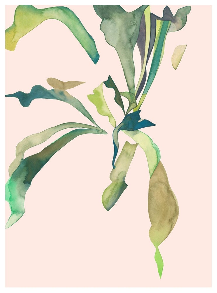 Image of Staghorn 1 Print by Renee Staeck