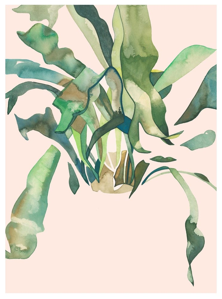 Image of Staghorn 2 Print by Renee Staeck
