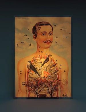 Image of Lámpara anatomía hombre