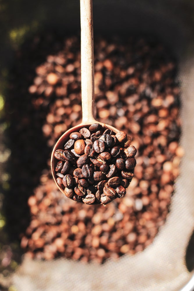 Image of Fresh Roasted Coffee