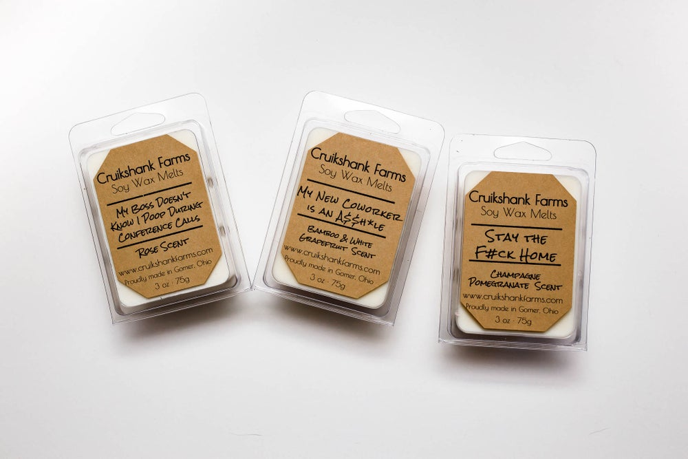 Image of Not your PG rated wax melts- Flash Sale- Free Shipping