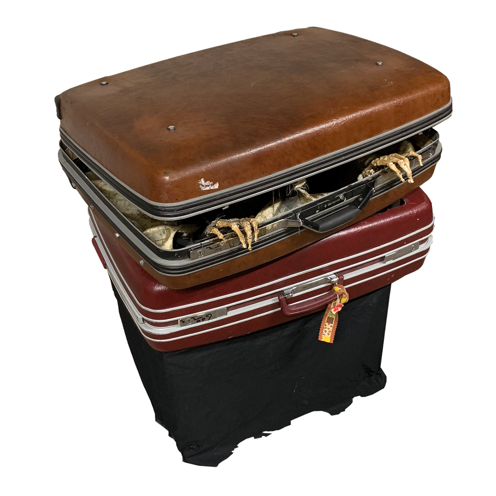 Image of Suitcase Skeleton Jumper