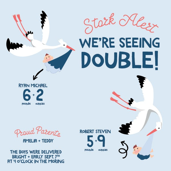 Twin Stork Baby Announcement