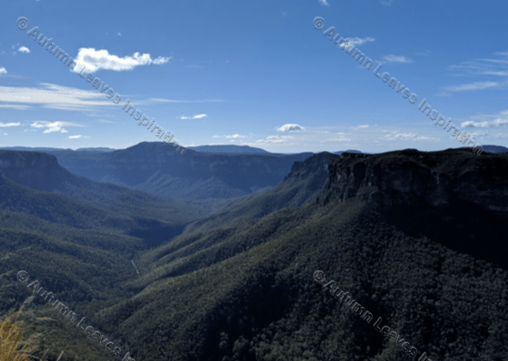 Image of T28 Grose River Valley, Blue Mountains, NSW, Australia
