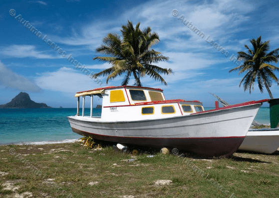 Image of T7 Fishing boat Fiji
