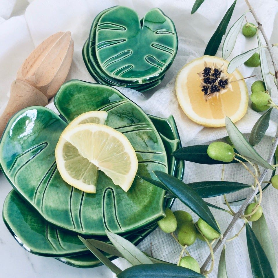 Image of Monstera Dishes