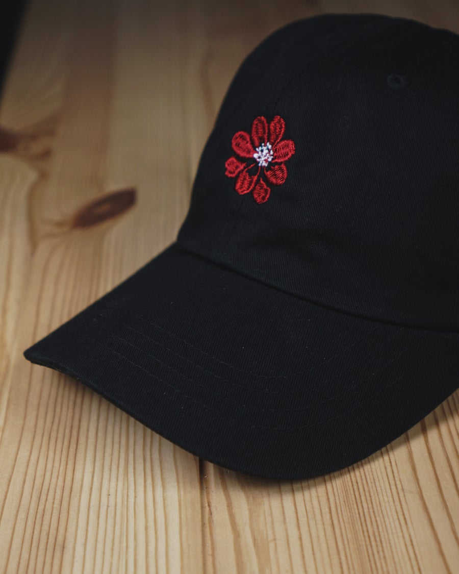 Image of chocolate cosmos dad hat.