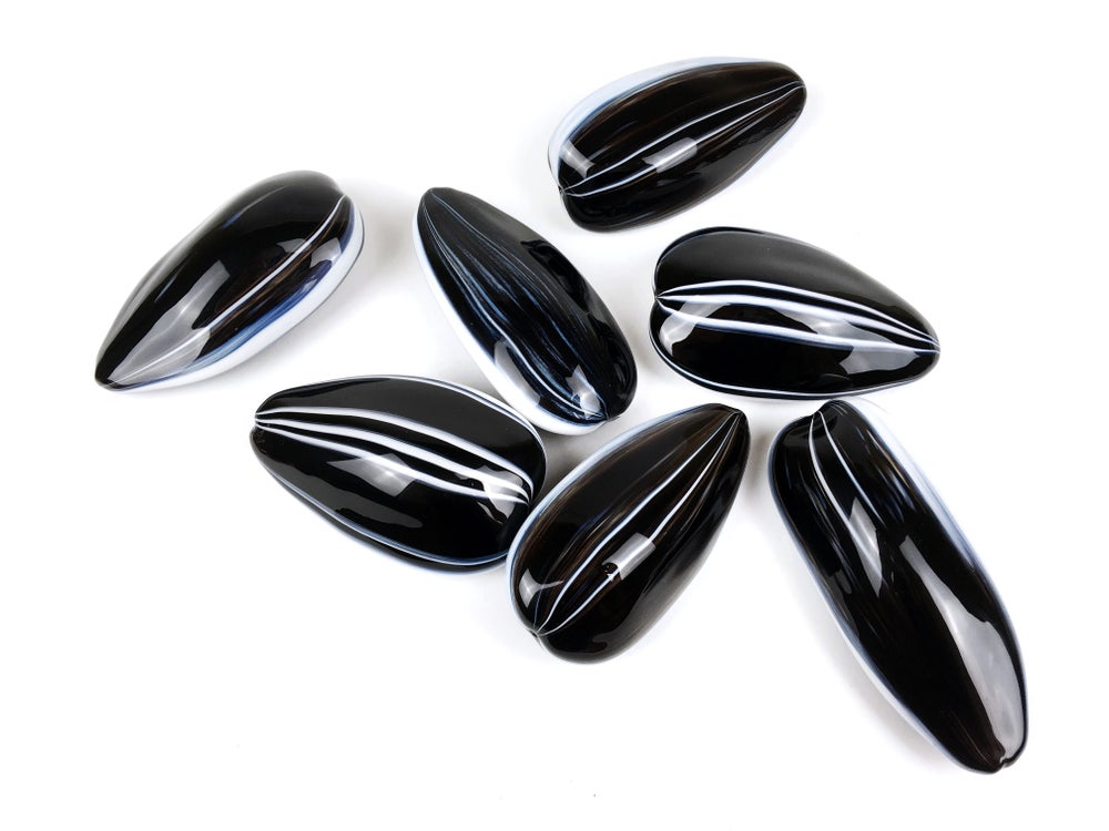 Image of Royal Hybrid Sunflower Seeds